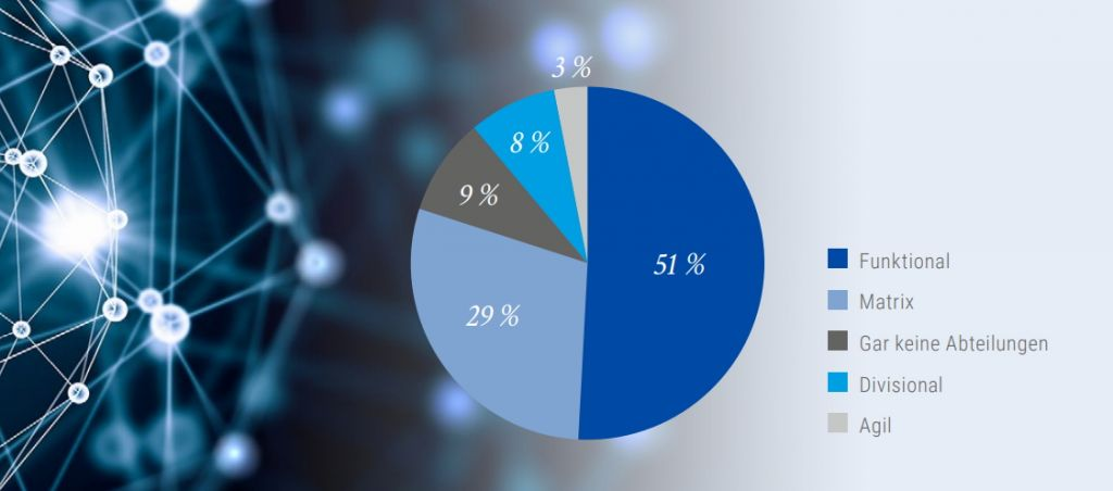 Abbildung 1: Verteilung der Organisationsformen in der Gesamtstichprobe. Grafik: StepStone/Kienbaum.