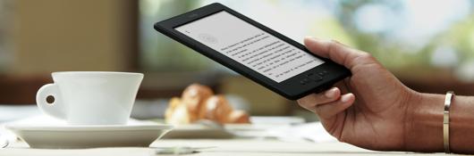 Die Vermessung der E-Book-Welt