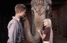 Elefanten in Erstausstrahlung