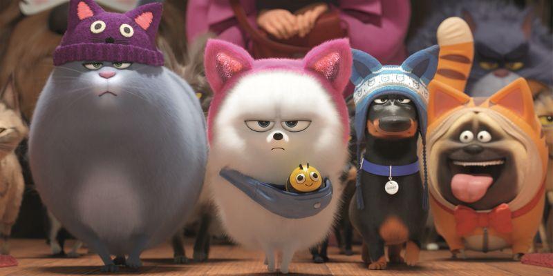 »Pets 2« kommt in die Kinos