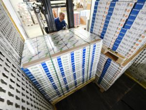 Ravensburger AG: Gabelstapler bringt Palette in Anhänger (Foto: Ravensburger)